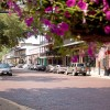 Welcome To Sweet Cane Inn Bed And Breakfast Natchitoches La